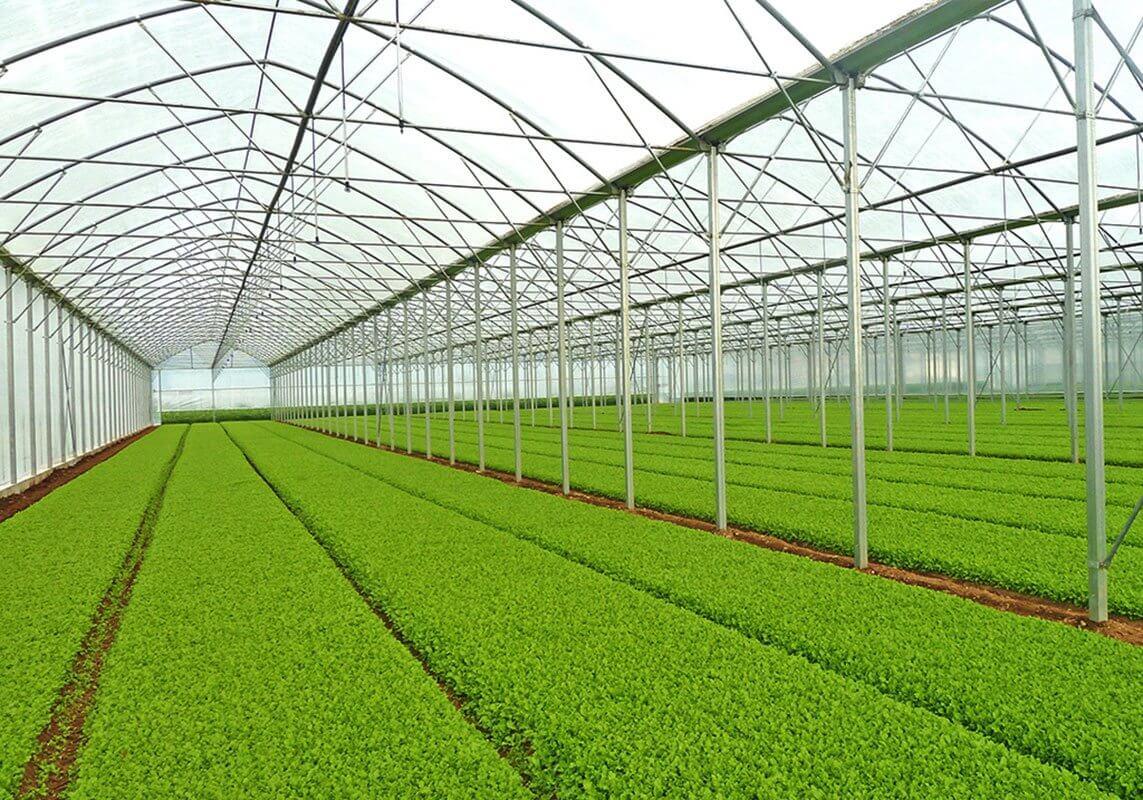 مجوز احداث گلخانه