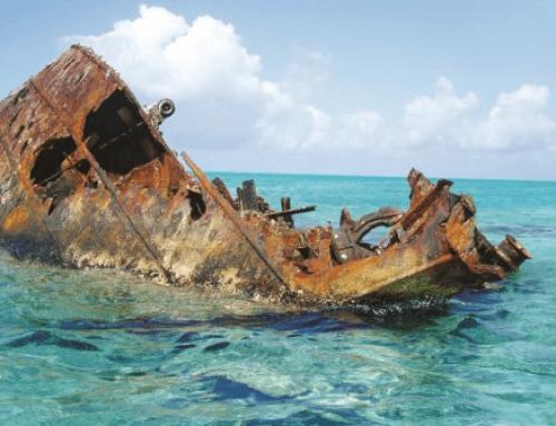 مجوز اوراق سازی کشتی