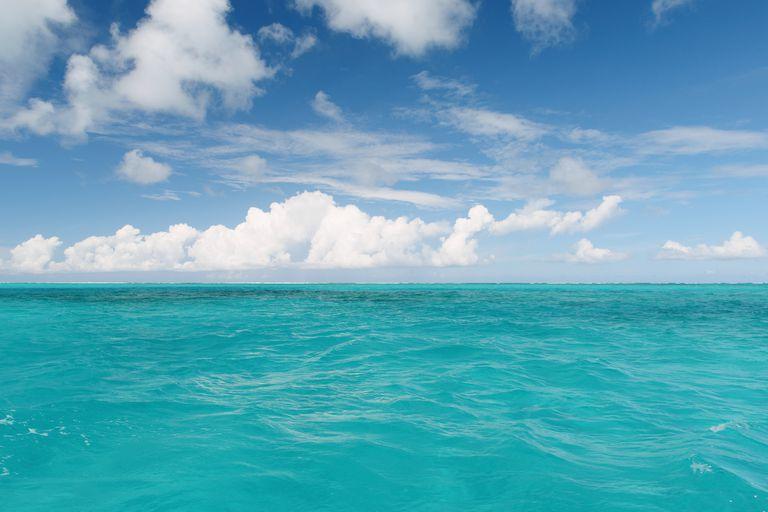 مجوز دفع مواد قابل تخلیه در دریا